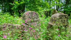 kirkut w Lesku czyli cmentarz żydowski