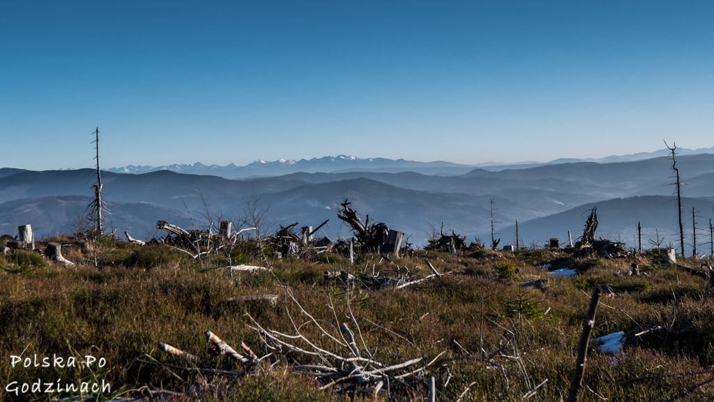 barania góra widok ze szczytu