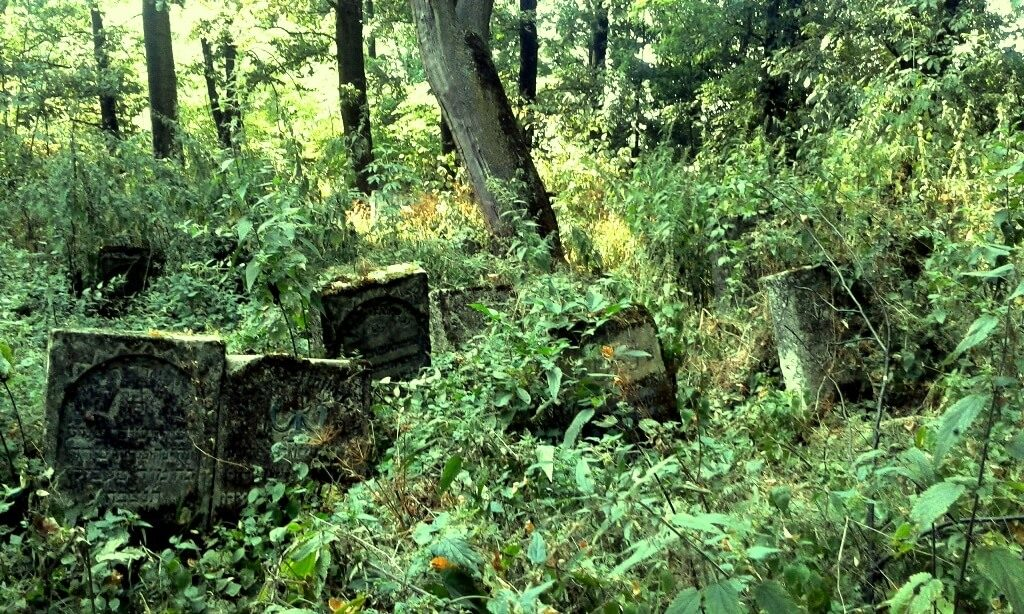 Szczebrzeszyn kirkut cmentarz żydowski