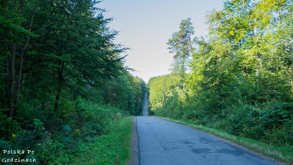 Przemyski-Park-Krajobrazowy-rowerem-4567