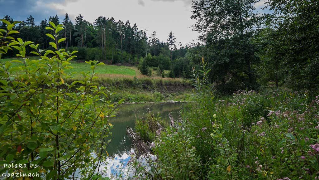 Przemyski-Park-Krajobrazowy-rowerem-4628