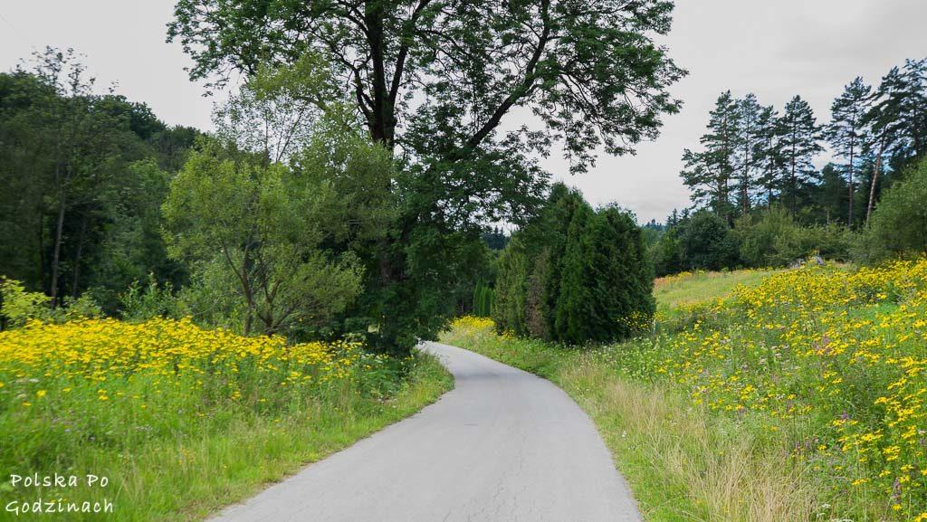Przemyski-Park-Krajobrazowy-rowerem-4675