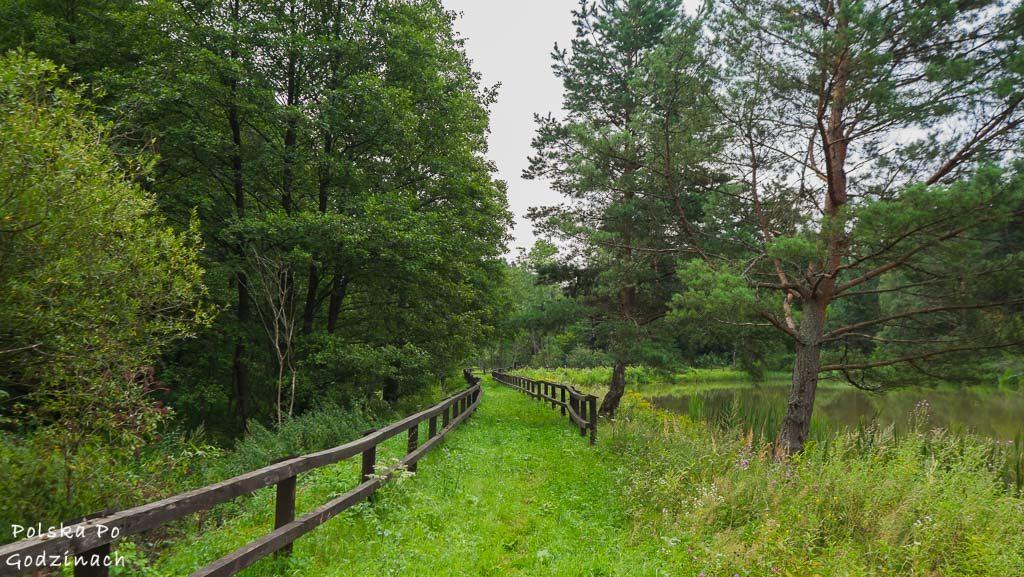 Przemyski-Park-Krajobrazowy-rowerem-4656