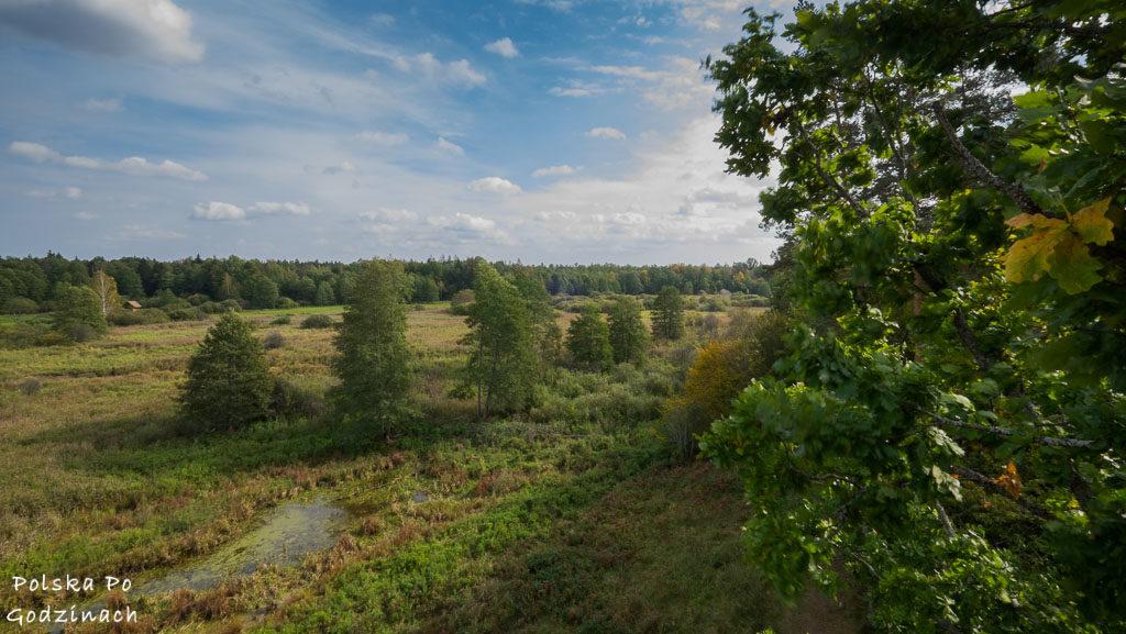 bialowieski-park-narodowy-5833