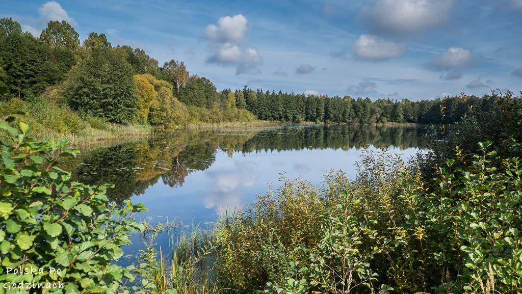 bialowieski-park-narodowy-5948