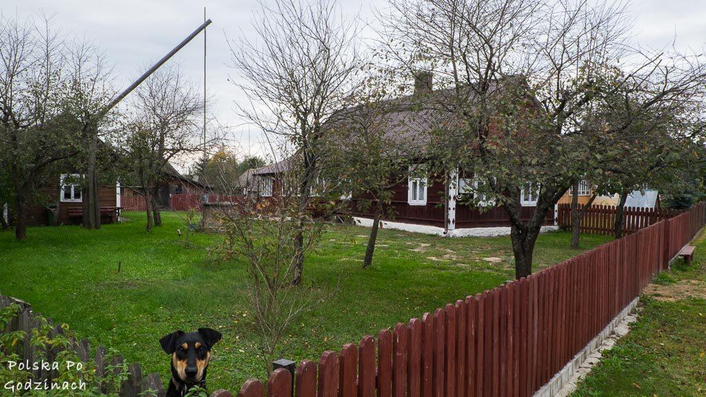 bialowieski-park-narodowy-stare-masiewo