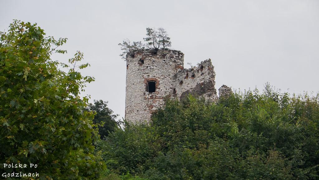 zamek-tenczyn-5675