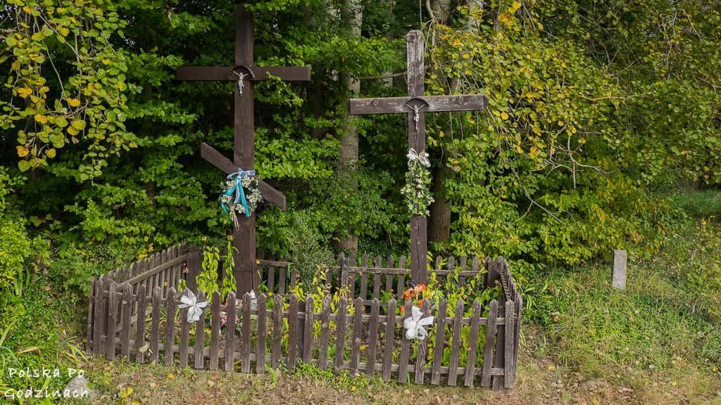 bialowieski-park-narodowy-5772