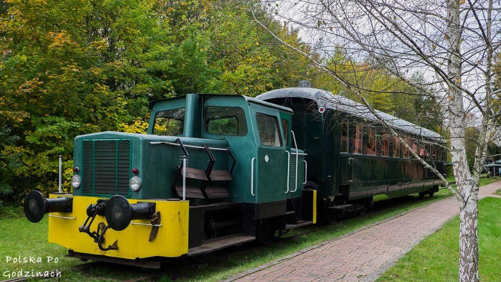 bialowieski-park-narodowy-6009