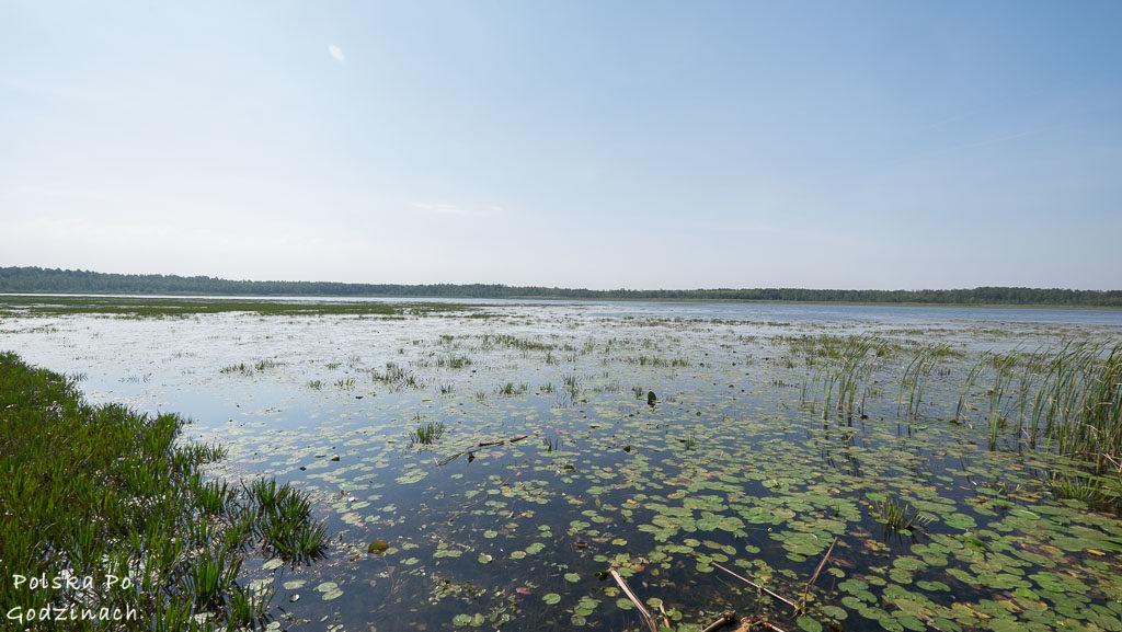 poleski-park-narodowy-5355
