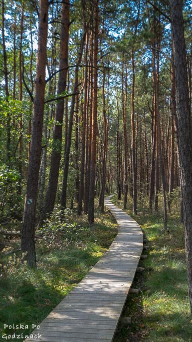 poleski-park-narodowy-5396