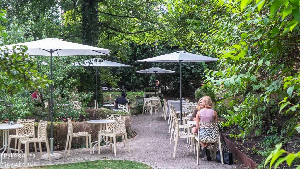 Meho Cafe w Krakowie. Kawiarnia z zielonym ogródkiem.
