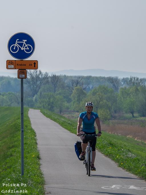 Wiślana Trasa Rowerowa jest świetne oznaczona znakami pionowymi i poziomymi