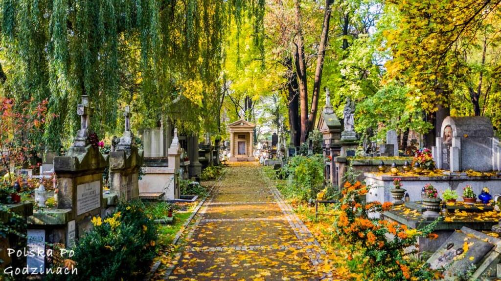 Cmentarz Rakowicki w Krakowie jesienią