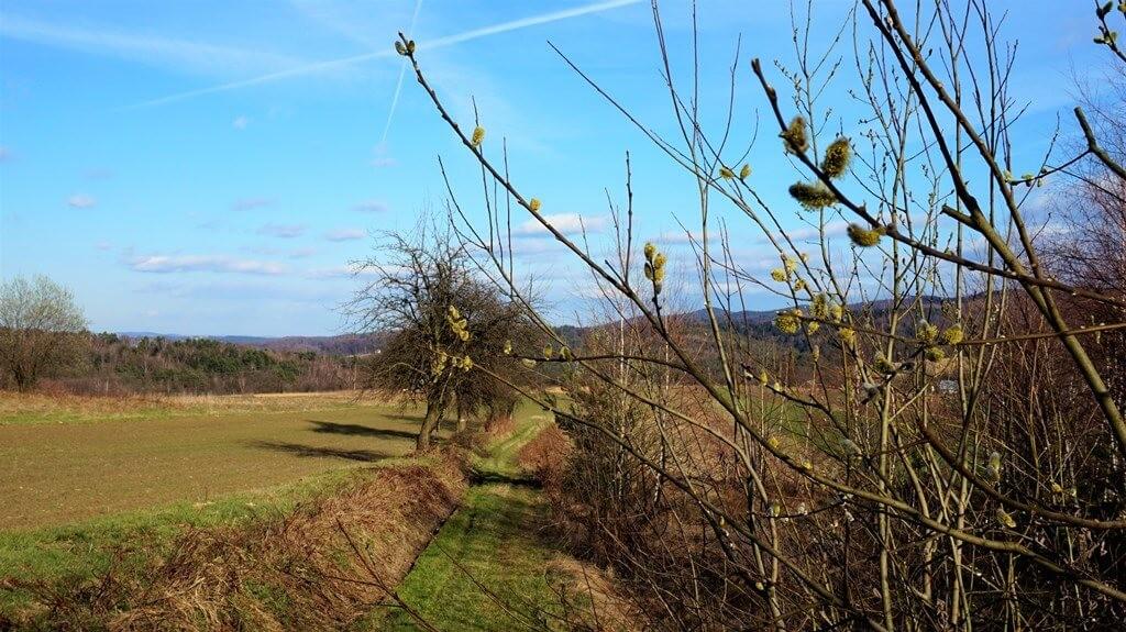 niebieski szlak Bochnia Rajbrot