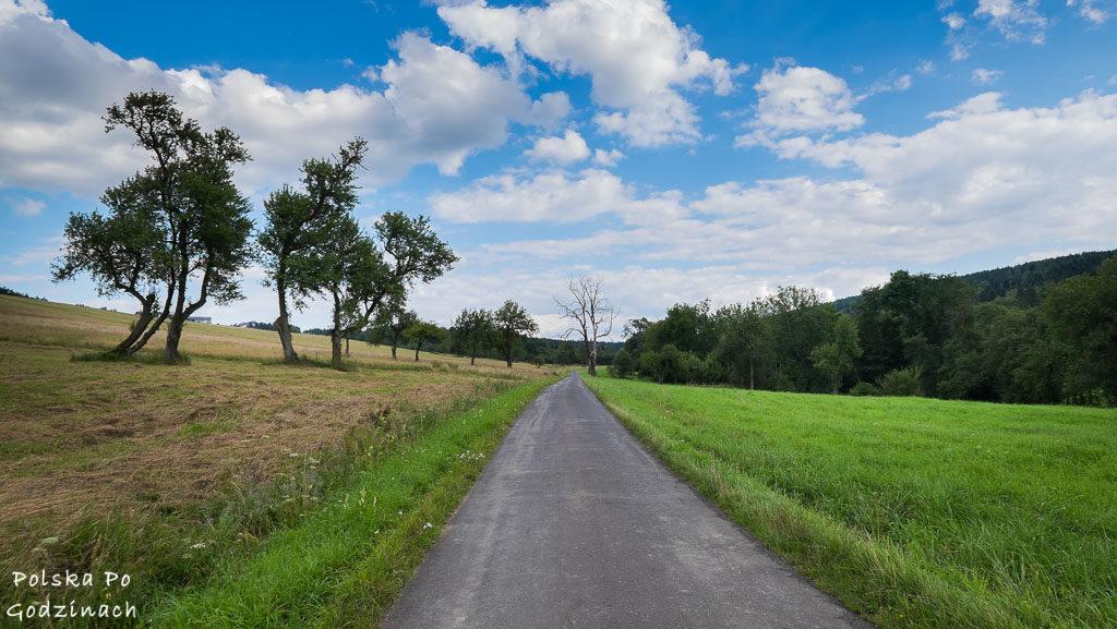 Przemyski-Park-Krajobrazowy-rowerem-4622
