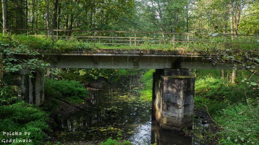bialowieski-park-narodowy-5776