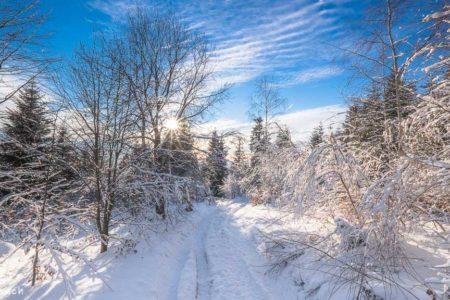 Magiczny Luboń Wielki – Beskid Wyspowy zimą