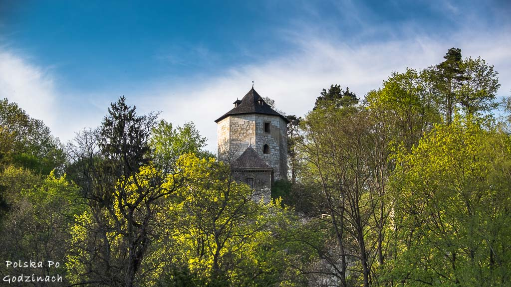 Ruiny zamku w Ojcowie to atrakcja Ojcowskiego Parku Narodowego i miejsce, które trzeba zobaczyć