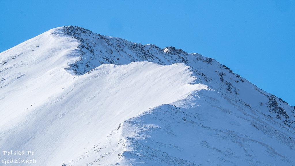 Widok na szczyt Mała Koszysta z Gęsiej Szyi