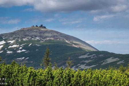 Śnieżka, Królowa Karkonoszy – szlak z Karpacza