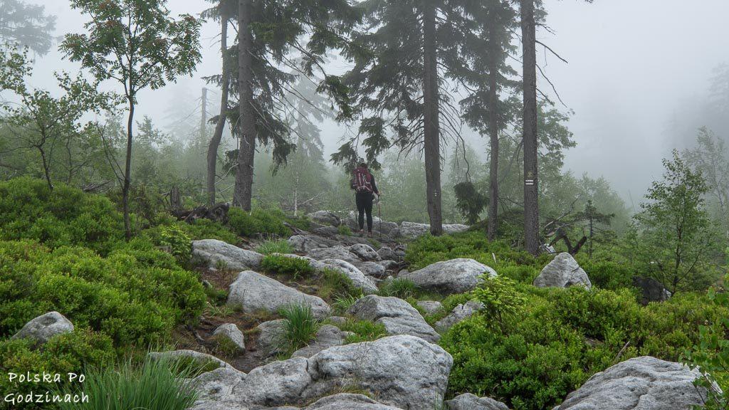 Góry Stołowe zaliczają się do najciekawszych miejsc w Polsce