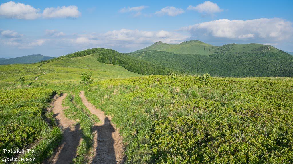 Bieszczady to teraz jedne z bardziej popularnych pasm górskich w Polsce.