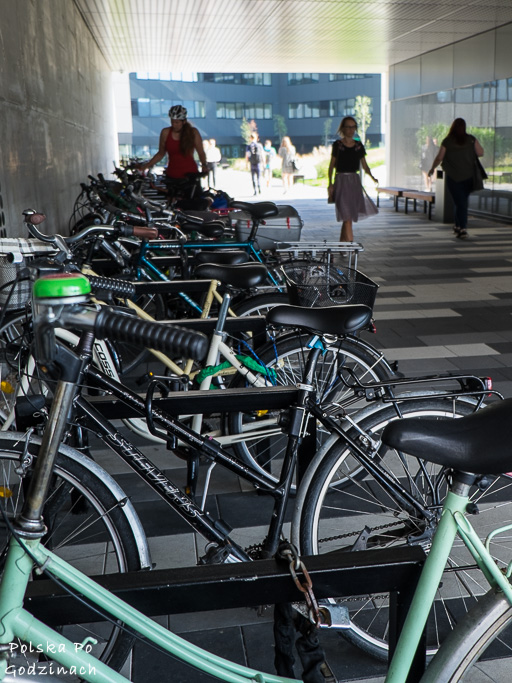 Parkingi rowerowe przy biurach stają się coraz bardziej zatłoczone.