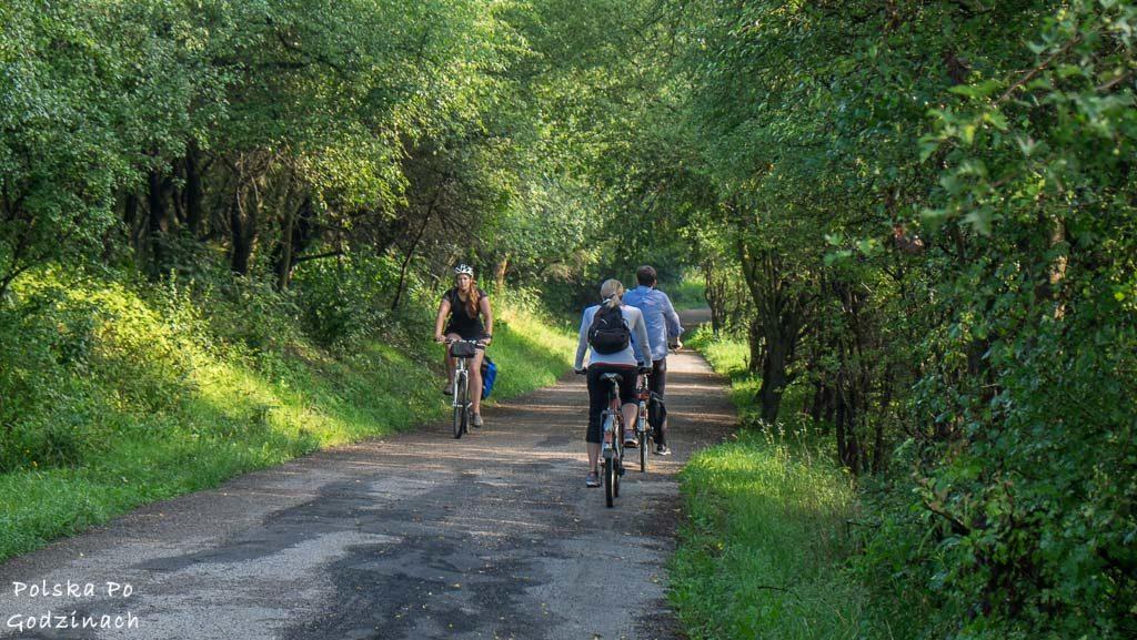 Dojazdy do pracy rowerem potrafią być szybsze niż samochodem!