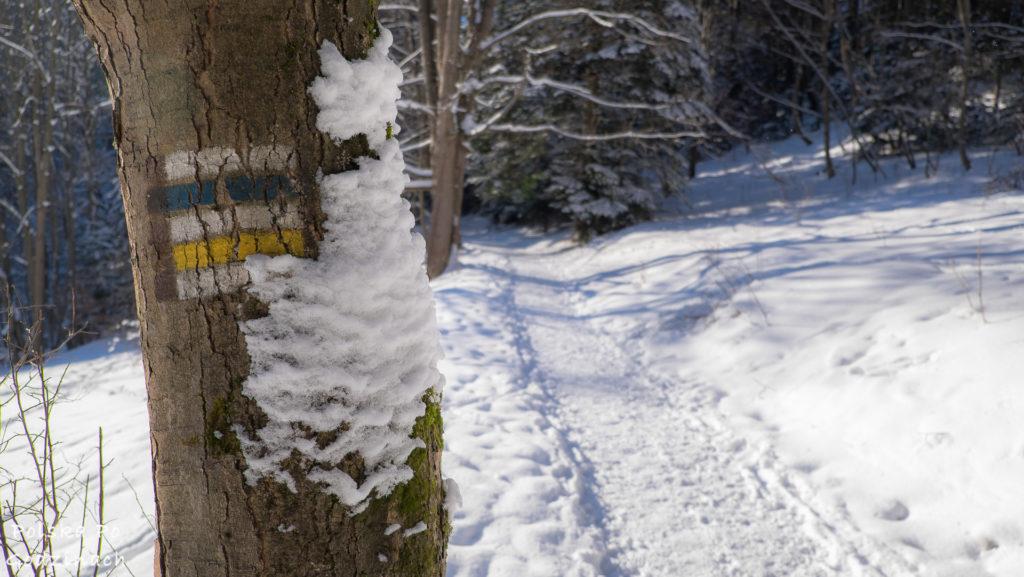 czas odwiedzic gory zima