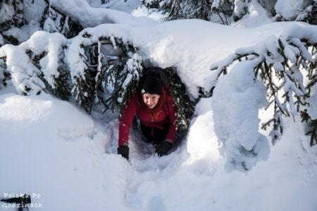 Gorce zimą:  Czarny szlak z Klikuszowej, czyli jak potrafi zaskoczyć zima?