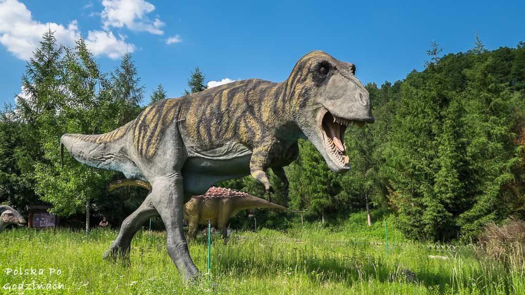 Potężny Tyrannosaurus rex z Jura Park w Bałtowie.