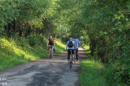 Trasy rowerowe w Krakowie i okolicach