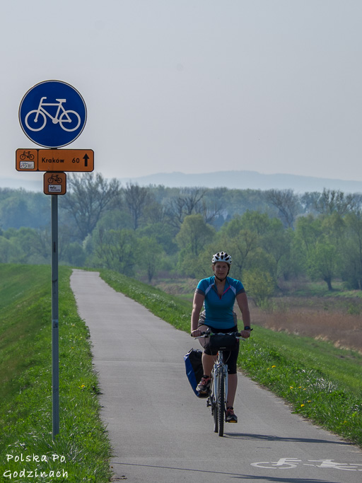 rowerzystka na Wiślanej Trasie Rowerowej na odcinku Kraków - Oświęcim