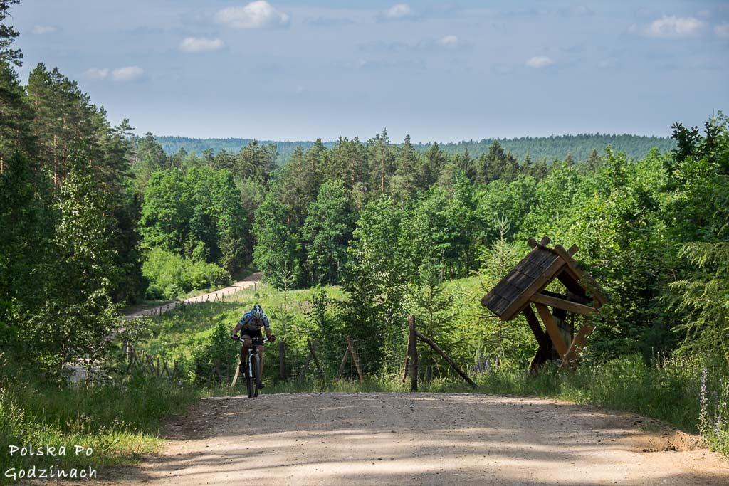 rowerzysta jadący pod górkę na szlaku Green Velo od strony Supraśla.