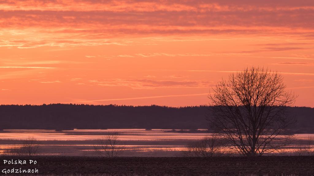 Biebrzański Park Narodowy o zachodzie słońca. To miejsce musisz odwiedzić będąc w Podlaskiem.