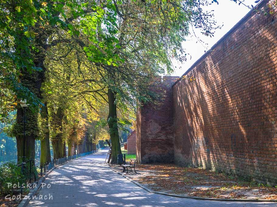 mury miejskie i planty w Chełmnie