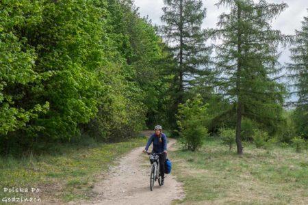 Kraków rowerem: offroad do Lasu Tynieckiego