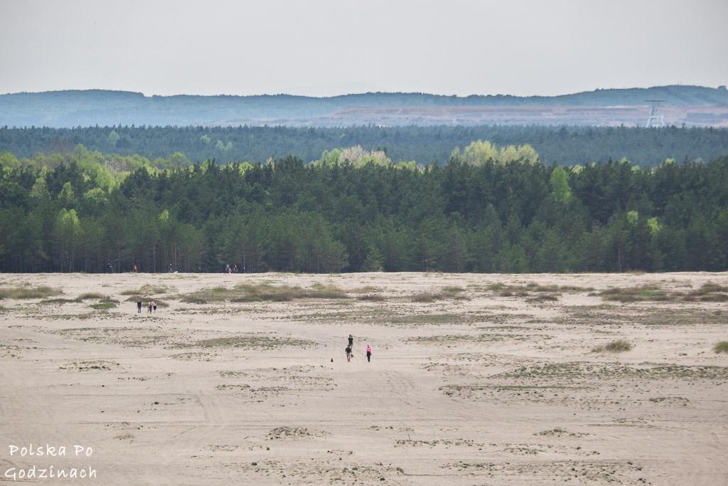 Widok na Pustynię Błędowską ze platformy widkowej na Wzgórzu Dąbrówka