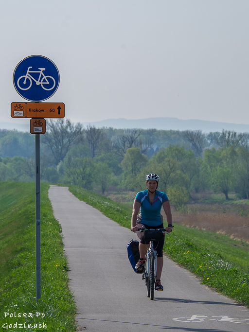 Wiślana Trasa Rowerowa to kręgosłup w systemie szlaków Velo Małopolska