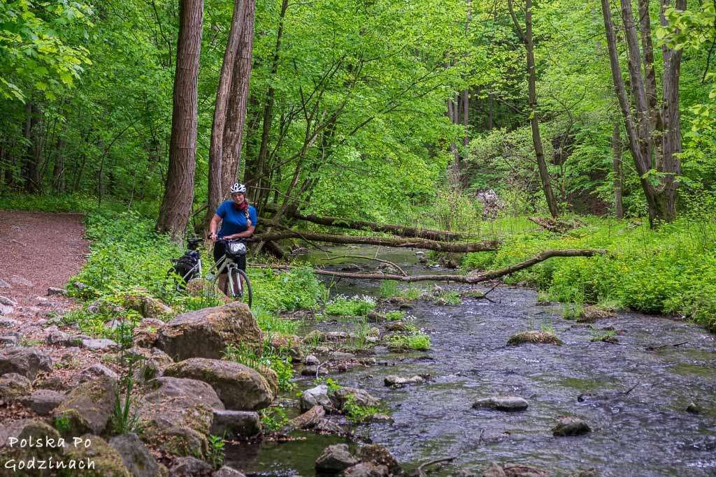Rowerzysta stojący w przy potoku w Dolinie Racławki.