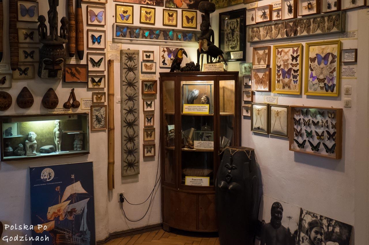 Wnętrze Muzeum Arkadego Fiedlera w Puszczykowie.