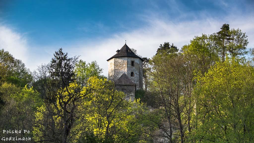 wieża Zamku w Ojcowie na wysokiej wapiennej skale