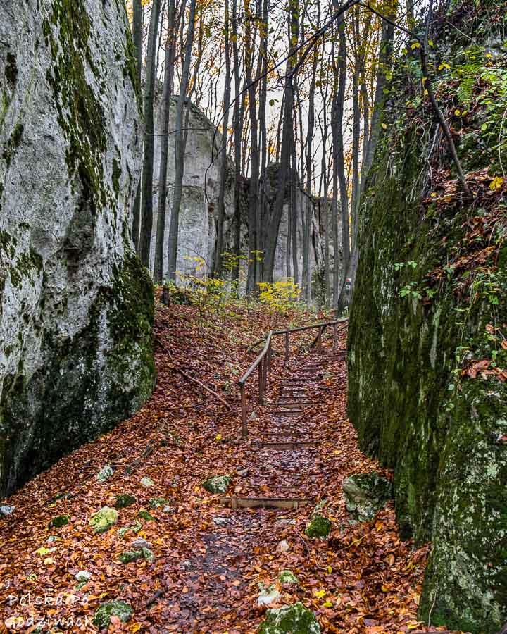 przejście między wysokimi wapiennymi skałami na terenie rezerwatu pazurek