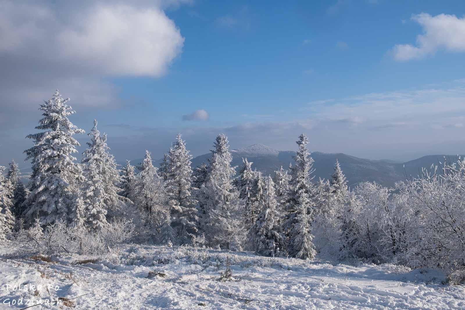 Zima w Beskidzie Wimowym.