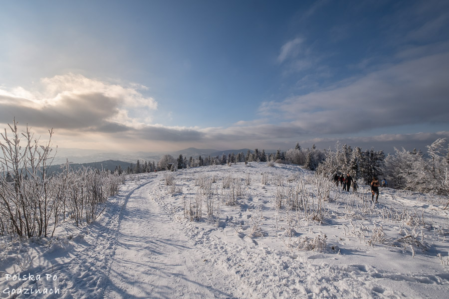 Droga z Ćwilina do Gruszowiec.