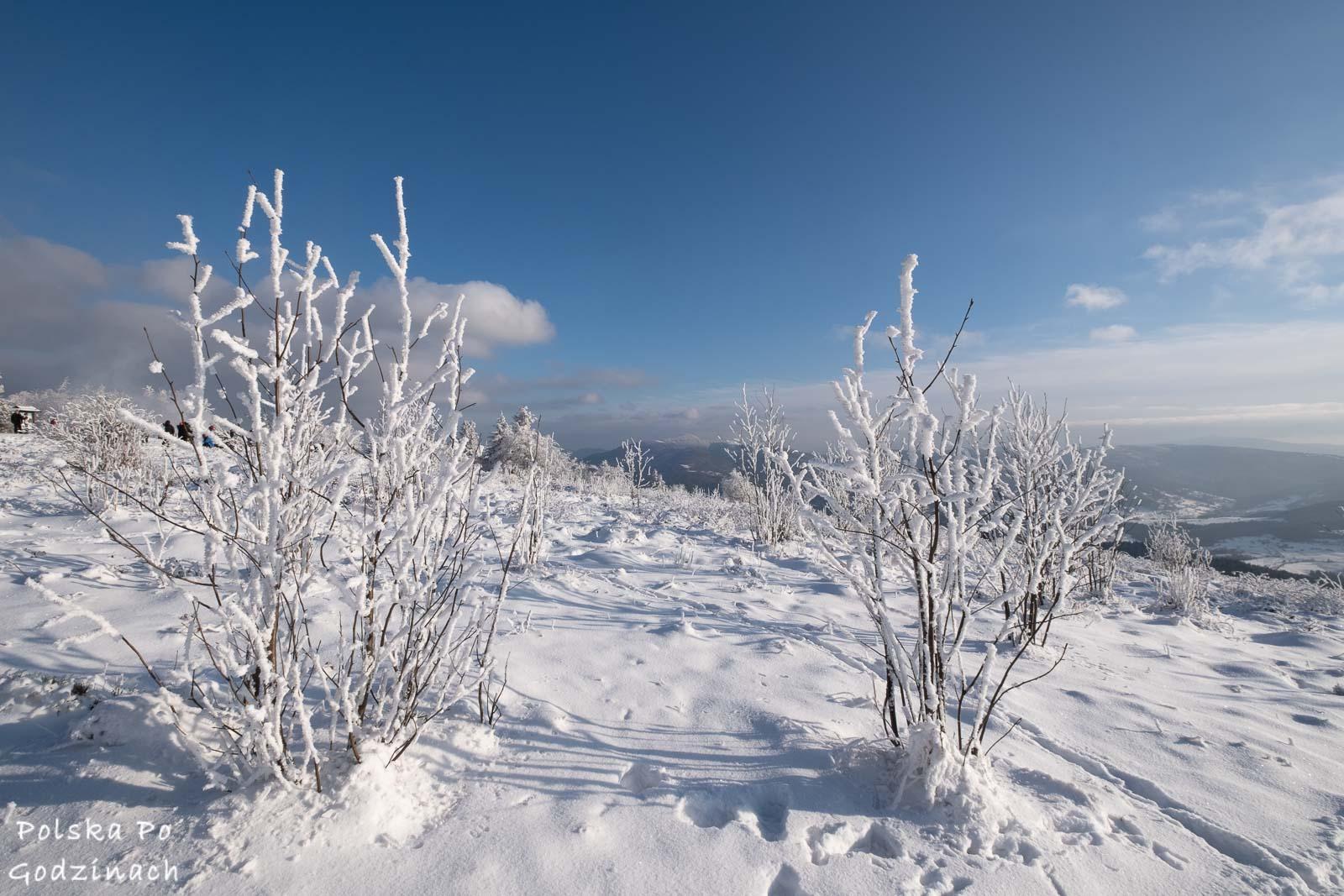 Zimowe widoki na szczycie Ćwilina.
