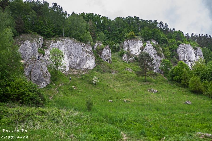 wapienne skałki w dolinie kobylańskiej