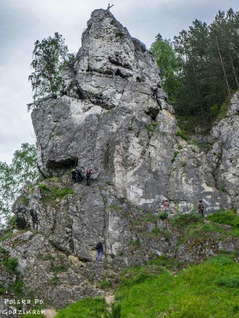 wspinacze skałkowi na skale żabi koń w dolinie kobylańskiej