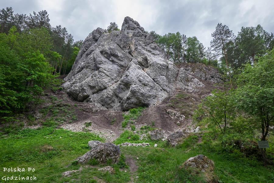 wapienna skałka Rozwalista Turnia w Dolinie Kobylańskiej